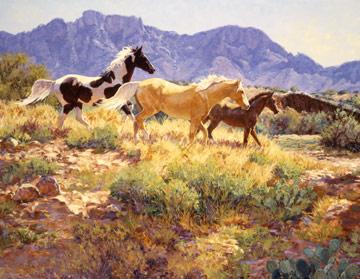 Horses at Big Wash