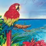 Parrot-dice