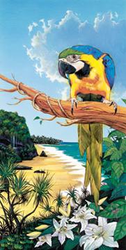 Macaw Cove