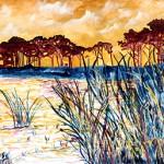 coastal-pines